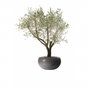 Eternit - Aladin Pflanzengefäß