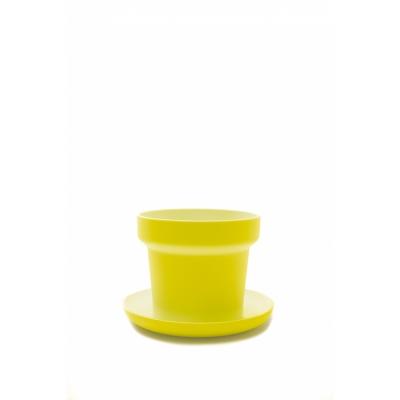 Authentics - Green Plant Pot (Set of 2) Yellow