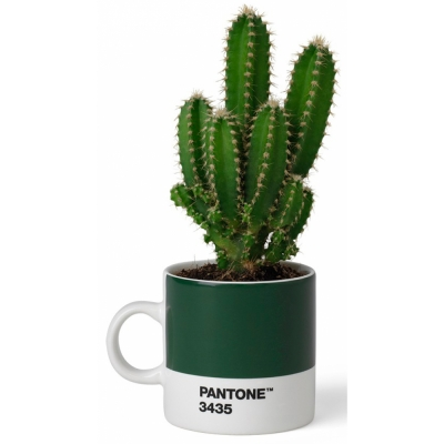 Pantone - Porzellan Espressotasse