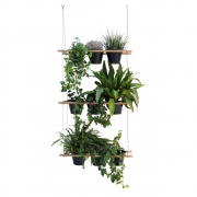 Compagnie - Electra Hanging Basket
