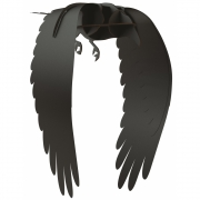 Ibride - Karl Raven