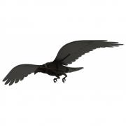 Ibride - Adam Raven