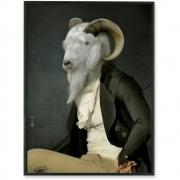 Ibride - Portrait de Rodolphe M