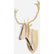Moustache - Deer wood Trophy