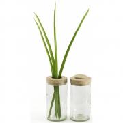 side by side - Vase et boîte Clair