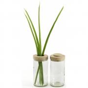 side by side - Vase & Dose