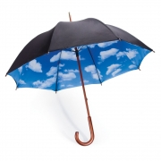 MoMA - Regenschirm Sky