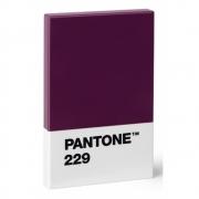 Pantone - Kreditkartenhalter Aubergine 229