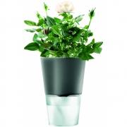 Eva Solo - Selfwatering Herb pot Ø 11 cm | Dark Grey