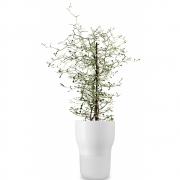 Eva Solo - Pot à plantes aromatiques
