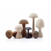applicata - Funghi