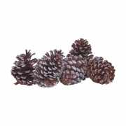 House Doctor - Coney Pinecones Large (Set of 6)
