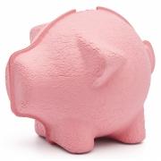 Puik - Tammy Piggy bank