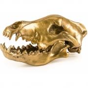 Seletti Diesel - Wunderkammer Wolf Skull Deko