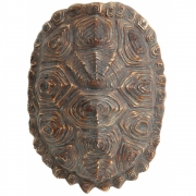 HKliving - Artificial Turtle Shell Green/brown